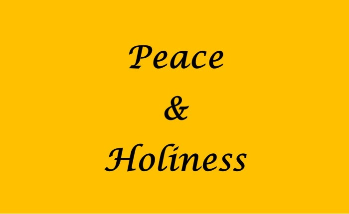 Strive for Peace & Holiness